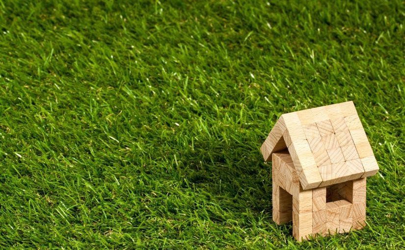 dachy zielone warszawa
